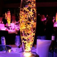 "24"" drum glass vase for sale $8 regula$12 wedding centrepiece"