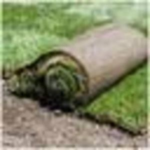 SOD INSTALLATIONS FOR COMPETITIVE RATES