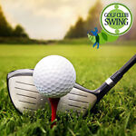 GolfClubSwing