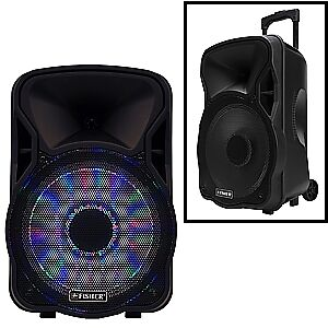 "15"" Bluetooth Wireless Portable PA Speaker with BUILT IN BATTERY"