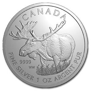 Pièce en argent/silver bullion Canadian Moose 1 Ounce/oz/once