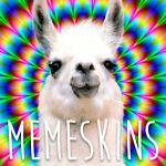 Memeskins