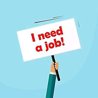 Looking for cash job afternoon