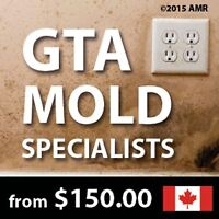 Toronto (GTA) Attic Mold Removal, Mould Inspections from $150.00