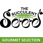 The Succulent Seed