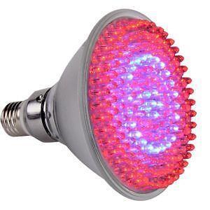 Uv Plant Light Ebay