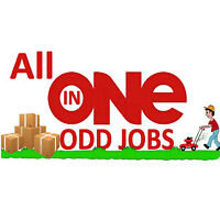 Looking for Odd Jobs