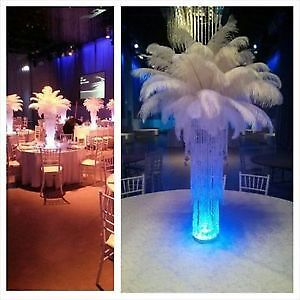 5ft tall Ostrich feather chandelier centerpiece for rent