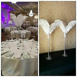 $10 Ostrich feather centerpieces for rent