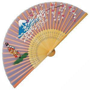 Hand Fan Craft