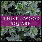 Thistlewood Square