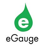eGauge Systems
