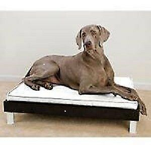 Contemporary Large Dog Beds New in Box