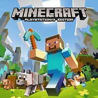 Looking for a Minecraft expert