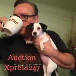 Auction-Xpress247