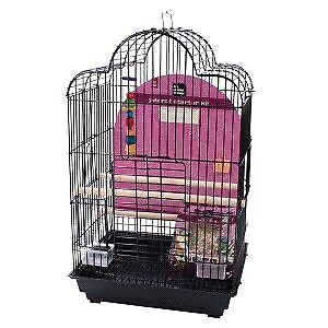 Cockatiel/conure cage, table top stand and accessories