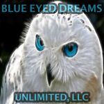 Blue Eyed Dreams Unlimited LLC