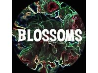 Blossoms midnight Stockport gig 5th august