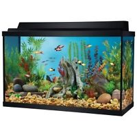Looking for small fish tank!!