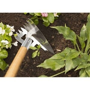 Outstanding Lawn, Garden & Home Care Peterborough Peterborough Area image 9