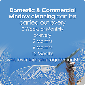 LOCAL WINDOW CLEANING