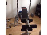York Mutligym Fitness 520 - Bench + Lat + Curl