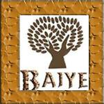 Baiye-Flagship-Shop