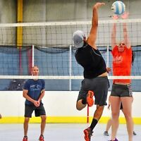Volleyball court and ball hockey rink rental specials!