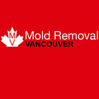 Black & Toxic Mold Removal Vancouver! Call Us Now