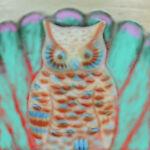 Owls&Oars