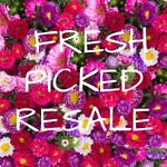 Fresh Picked Resale