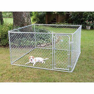 Looking for an outside dog pen
