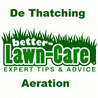 Leaves Removal Fertilizing Grass Seeding Aeration Lawn Rolling