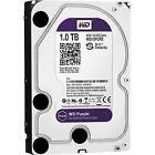 WD SAS Hard Drives (HDD, SSD & NAS)