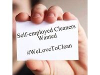 DOMESTIC CLEANER £10 phr part-time