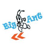Big Ant Brand