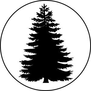 $30 SIX FOOT BLUE SPRUCE TREES