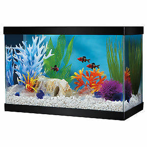 Small Aquariums with high end accessories
