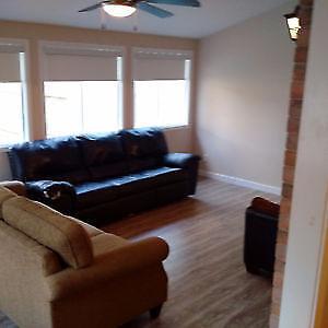 cheap bedroom available near conestoga doon valley campus Kitchener / Waterloo Kitchener Area image 3