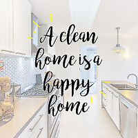 Professional Cleaner/Organizer Accepting New Clients 25 Yrs EXP
