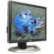 Dell 15 Monitor