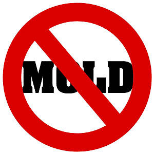 Mold Inspections, Mould Remediation / Removal in the Durham Area