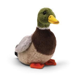 Stuffed Mallard Duck Ebay