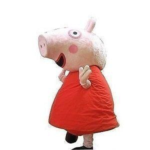 Peppa Pig Costume Hire Ebay