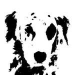The Blackeyed Dog