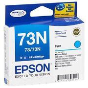 Epson Ink 73N