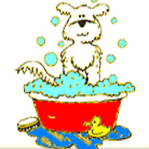 Dog wash find or advertise pet animal services in canada self serve dog wash no appointment necessary solutioingenieria Images