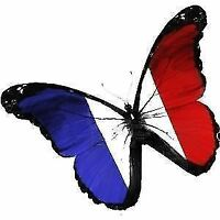 High Quality French Teacher for Professionals,Students,TEFAQ 20$