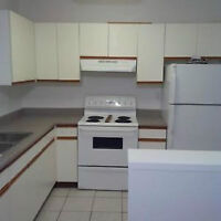 Aug 1 or Aug 15th - 2 BR with, new Carpet