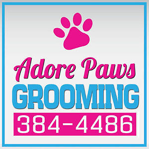 Adore Paws Grooming!!Open 7 days a week! Cat's and Dog's!